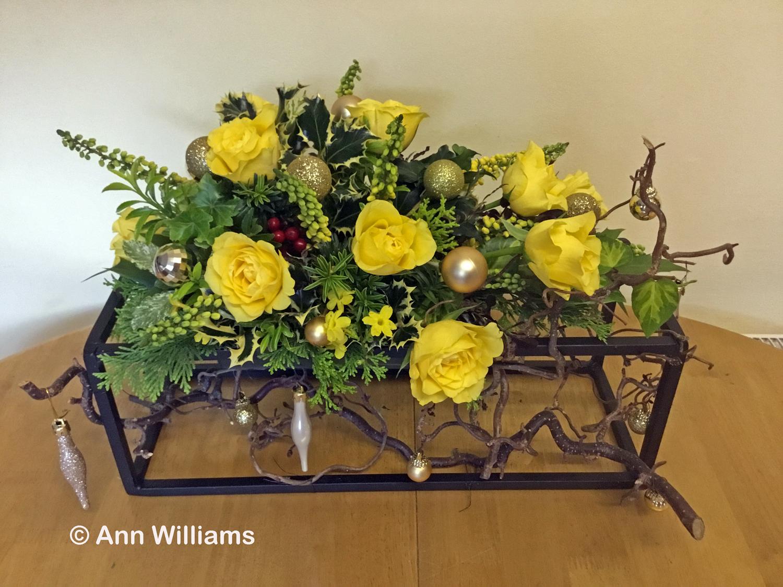 VHC - Ann Williams