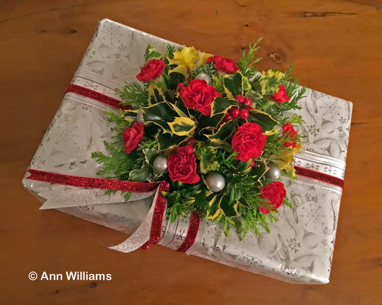 HC - Ann Williams